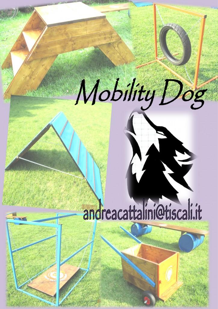 dove posso trovare gli attrezzi per la mobility dog