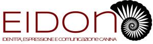 eidon logo 1