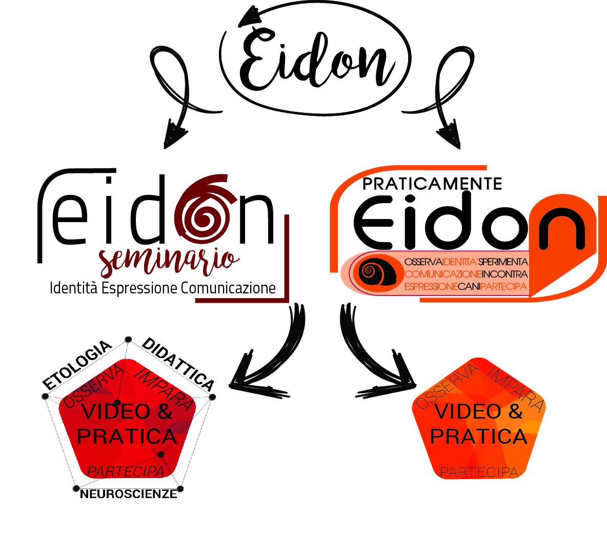 mappa concettuale eidon