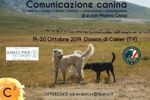 comunicazione-canina-19-20-ficss-piu-grande-2